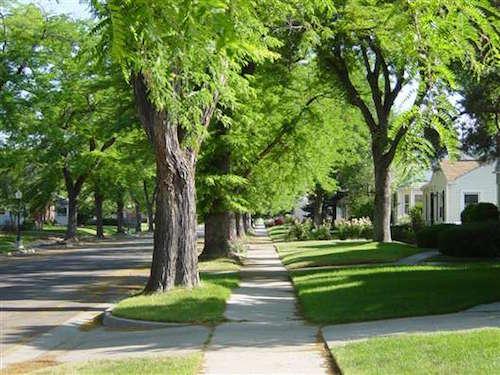 Sidewalks_Good_-_Sugarhouse__6_