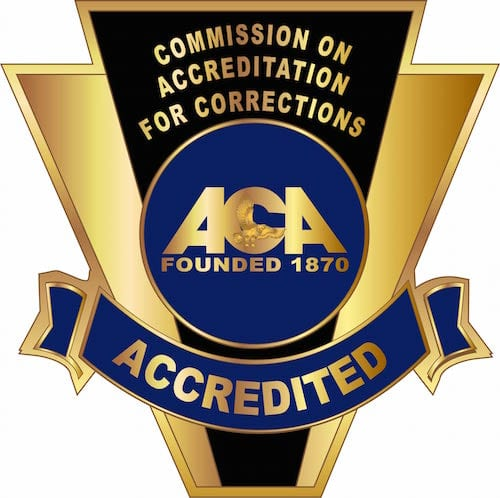 C-96026 American Correction Assoc-Accredited Pin