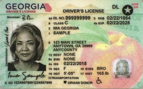 new ga license